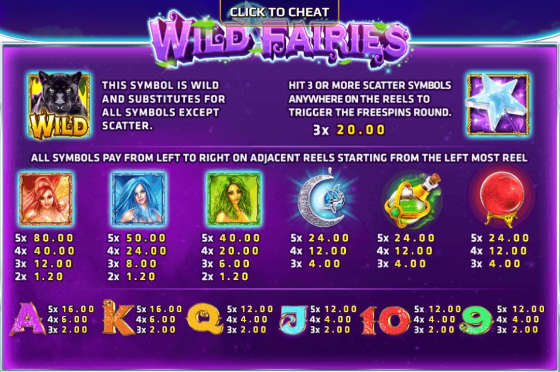รีวิวเกมสล็อต wild fairies bonus