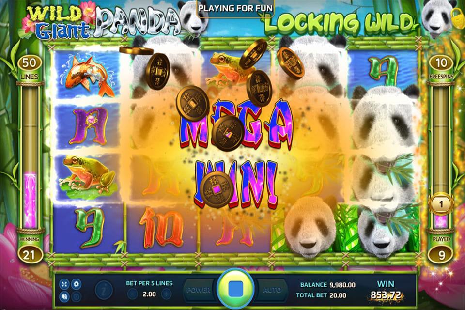 Wild Giant Panda Mega Win
