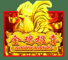 slotxo golden rooster