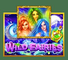slotxo wild fairies