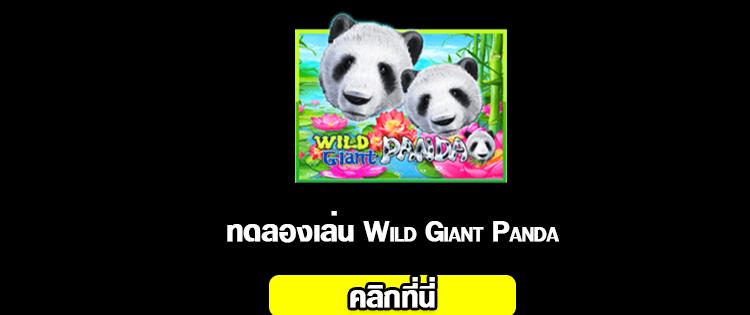สล็อต Wild Giant Panda 2020-2021 ทดลองเล่น slot online จากค่าย slotxo ได้แล้ววันนี้ 01