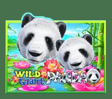 slotxo game wild giant panda